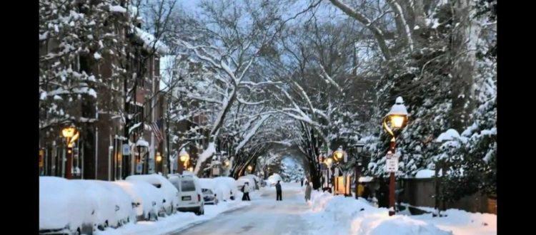 Enjoy Central Park in winter.